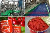 Kant en klaar Project voor de Lijn van de Verwerking van de Tomatenpuree & de Lijn van de Ketchup