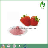 De Organische Vorst van de Levering van de fabriek - het droge Poeder van het Sap van het Fruit van de Aardbei Bulk