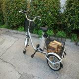 Qualität Pedelec drei Rad-elektrisches Dreirad