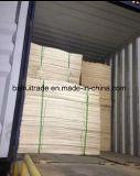 1270X840 / 640 mm Birch Core Veneter Birch for Plywood