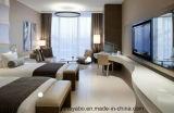 Het Meubilair van de Slaapkamer van het Meubilair van het Hotel van de luxe