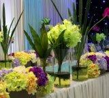 Vase à fleur à la maison acrylique clair de vase à décoration
