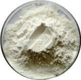 Santé masculine Acide gras naturel 15% -85% Saw Palmetto Fruit Extract
