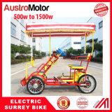 電気サリー州のバイクの電気二人用のバイクの電気4人のバイク