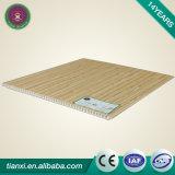 Le plafond faux de PVC de poids léger conçoit le panneau de porte