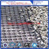 Geogrid voor Kolenmijn (kan worden aangepast)