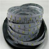 고성능, 높은 루멘, 12/24V 의 5630 유연한 LED 지구
