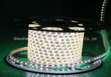Wathet 색깔 60LEDs SMD5630 220V IP65 LED 밧줄 빛