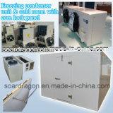 O congelamento da unidade do condensador e sala fria com painel de trava do came