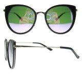 Óculos de sol novos da forma das mulheres dos vidros do projeto polarizados com Ce FDA