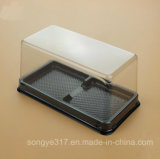 Прозрачный квадратных торт в блистерной упаковке .