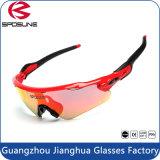 Fábrica Top Sale Customized Brand UV400 Horse Riding Equestrian Sunglasses