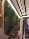 Искусственные растениями настенной панели оболочка