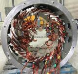 6人のポーランド人のブラシレス同期低速3-Phaseガスの発電機(交流発電機)