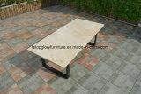 ベルトの編まれた及びアルミニウム家具、屋外の庭のソファー(TG-6004)