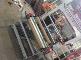 Máquina soplada película del LDPE del CE de Ruipai