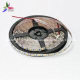 Striscia flessibile bianca del chip 60LEDs 14.4W DC12V LED della striscia IP20 SMD5050 di colore LED di alta luminosità