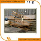 대리석을%s GBDM-3020/8 다중 맨 위 닦는 기계