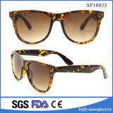 Neues Art-Gelb und grosse Sonnenbrillen Brown-Demi für Frauen