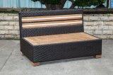 屋外のチークの2シートの藤か籐椅子(LN-3001-2)
