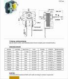Il riscaldatore/cuoce il motore di ventilatore elettrico di CA del forno/della pompa/Humidfer del condizionatore d'aria