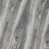 Pintado V Capas impermeáveis / piso laminado piso laminado