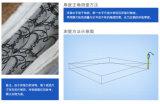 2017 كلاسيكيّة تصميم أثاث لازم - سرير من رف جيّدة - [سبرينغ متّرسّ]