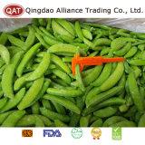 Gefrorene Zuckerschnellerbsen für den Export