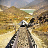 Shandong-Goldlieferanten-Auswirkung und Förderband Abnutzungbeständiges Ep-Nn cm