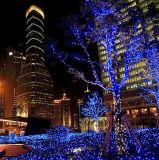 6つのカラーは販売のためのワイヤーLEDクリスマスの照明を黒くする