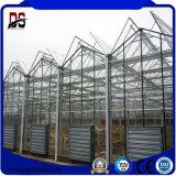 Couvercle en verre commercial agricole Flower greenhouse