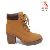 Ботинки зимы самых лучших продавая повелительниц ботинок классицистических для сексуальных женщин (AB651)
