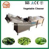 Industrielle Obst- und Gemüsewaschende Geräten-Gemüsereinigungsmittel-Maschine