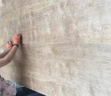 Contre-plaqué normal de bouleau de feuille de contre-plaqué pour la décoration de meubles