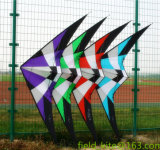 De Vlieger van de stunt Fy20160221-105