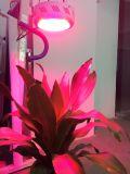 La planta de interior Epistar 300W LED del poder más elevado crece la luz