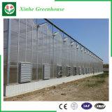 Landbouw/de Commerciële Tent van het Blad van het Polycarbonaat met KoelSysteem