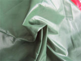 20d Nylon Taffeta Fabric per Down Coat (XSN005)
