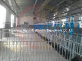 Pig Farming Equipmentのための自動Pig Feeding System