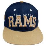 Sombrero con la tela de lana Sk1620