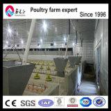 高い肉焼き器のひよこのレートの自動養鶏場の原料