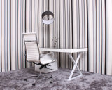 Temperted 유리제 책상 또는 책 테이블 또는 Secretaire 또는 비서 책상 (JINBO. 12)
