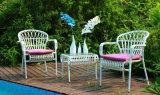 2016新しい錬鉄の折りたたみ椅子の庭の家具