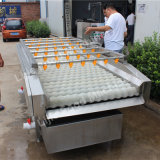 Máquina de lavar do coco do fabricante Lj-2000