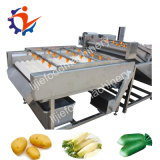 Máquina de lavagem da limpeza da escova da fruta e verdura para a cenoura da batata