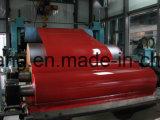 الصين منتوجات/مموّن. لون كسا يغلفن فولاذ ملا مع 30 سنون خبرة