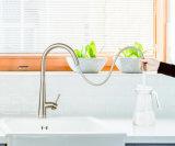 シンプルな設計の台所ミキサーの流しのコック