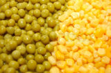Núcleo de maíz dulce conservado alta calidad de China