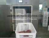 Qualitäts-energiesparende Vakuumkühlvorrichtung für Nahrung