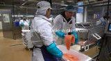 Große niedrige Temperatur-Kühlraum-Tiefgefrierlagerung und kühlen Gerät für Fisch-aufbereitende Fabrik und Fleisch-Logistik-Absatzzentrum